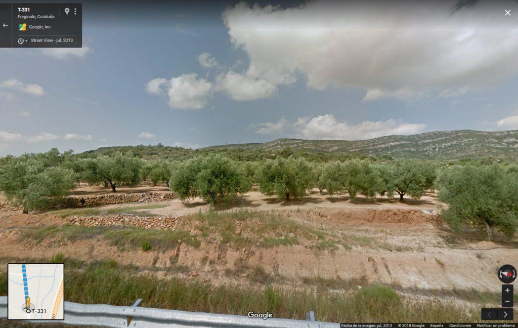 El martirio fue en la plana de los almendros, a 7 km del pueblo.